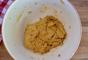 overhead photo of pumpkin biscotti dough in a white mixing bowl.